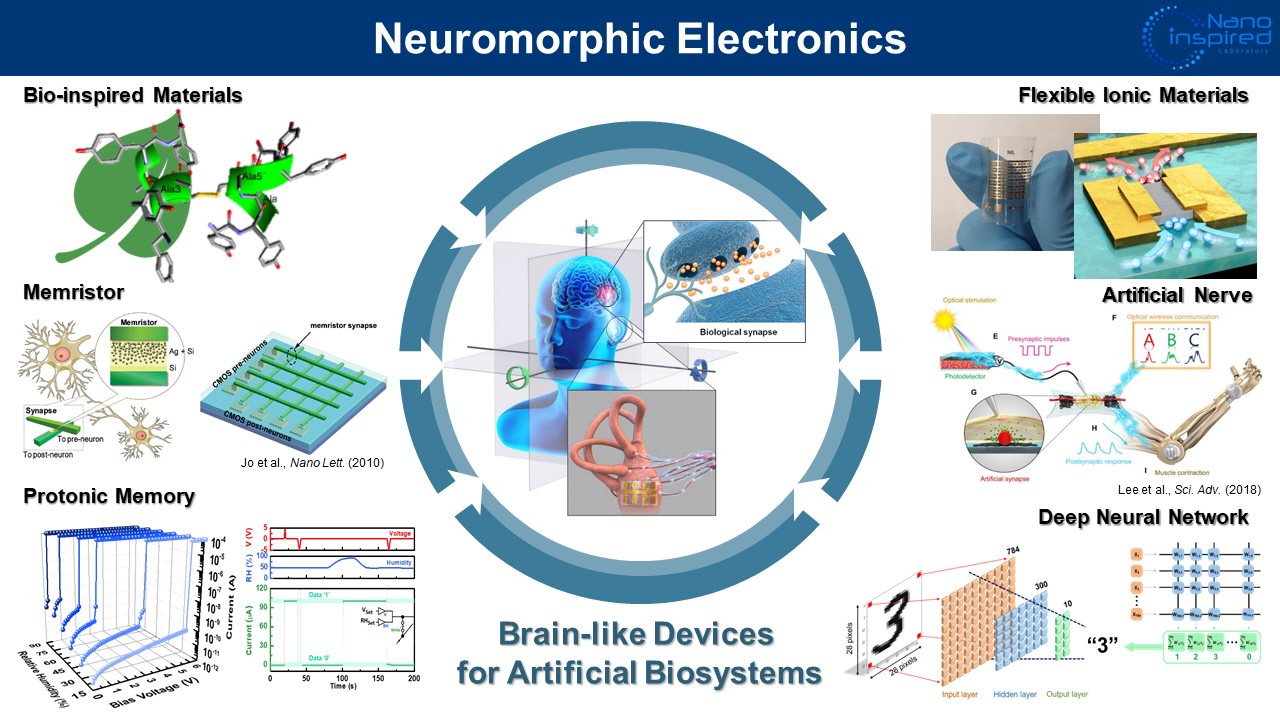 Neuromorphic Electronics